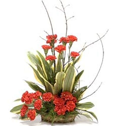 A Little Sunshine - Basket Arrangement of 20 Red carnations