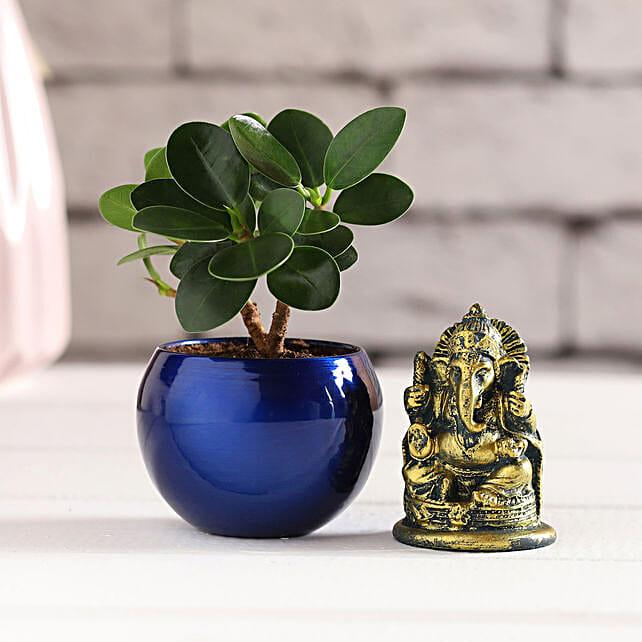 Antique Ganesha Idol & Ficus Compacta Plant