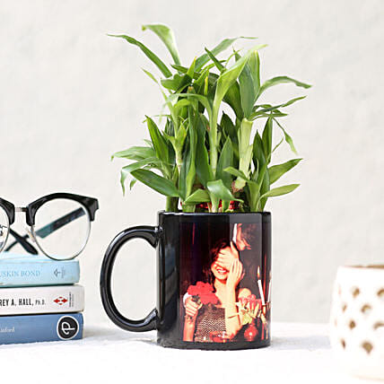 Online Personalised Lucky Bamboo Printed Mug:Lucky Bamboo for Birthday