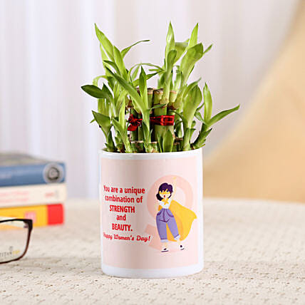 Bamboo Plant Online
