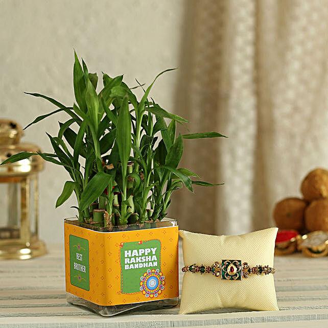 Bamboo Plant with Rakhi