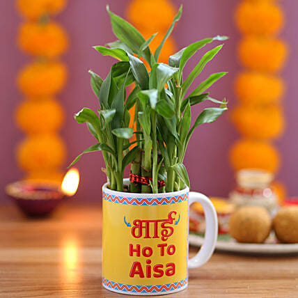 Online Plant with Mug for Brother