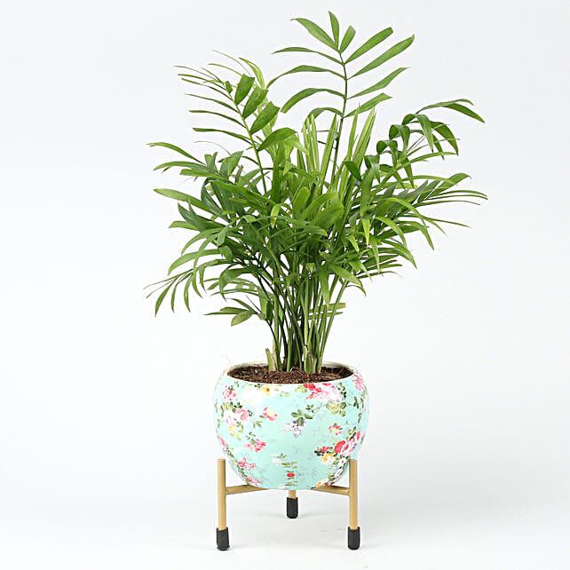 Online Chamaedorea Plant In Floral Design Metal Pot