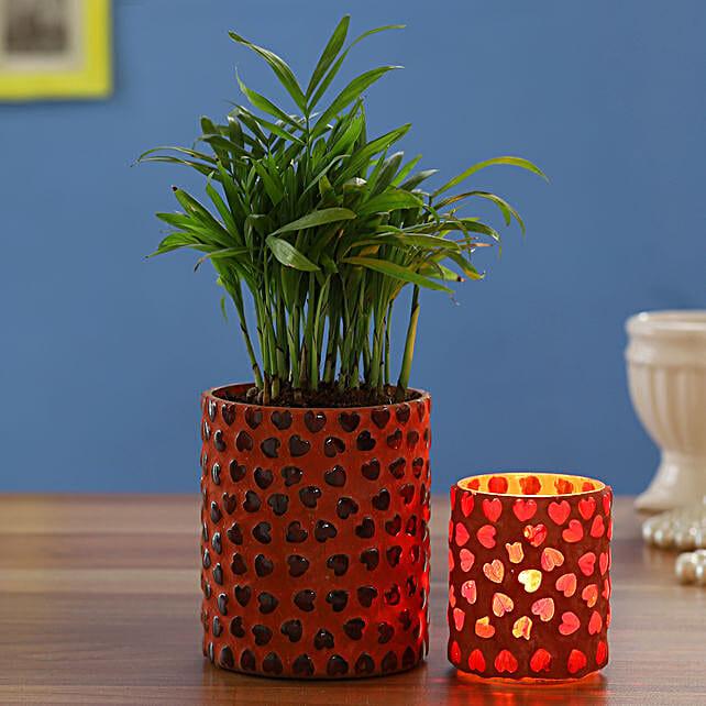 Chamaedorea Plant In Mosaic Vase With Mosaic Votive