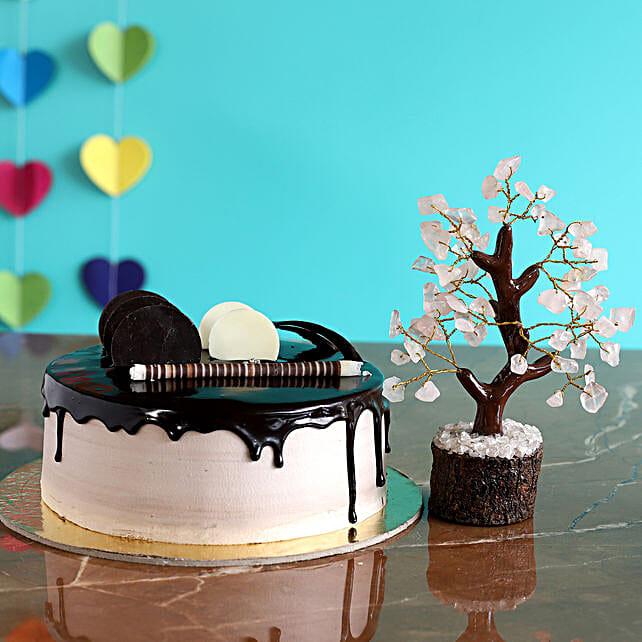 Drooly Chocolate Cake Wish Tree