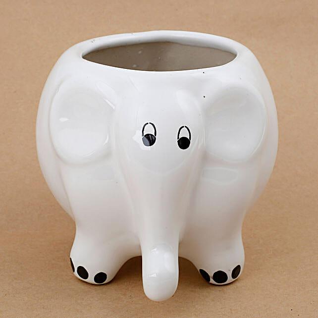 elephant shape plant vase:Planter Pots online