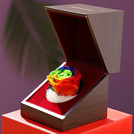 online multicolour infinity rose with wooden box:Flowers to solan