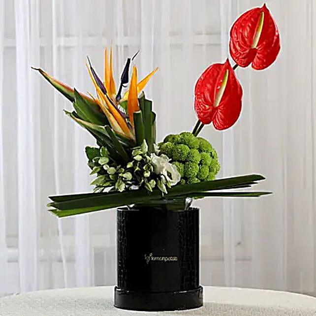 Valentine's Flowers Online:Anthuriums