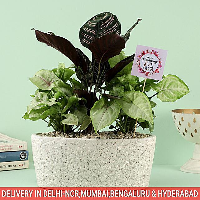 Online Garden Bouquet For Anniversary