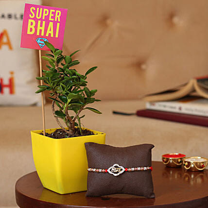 Online Rakhi with Plant For Bro