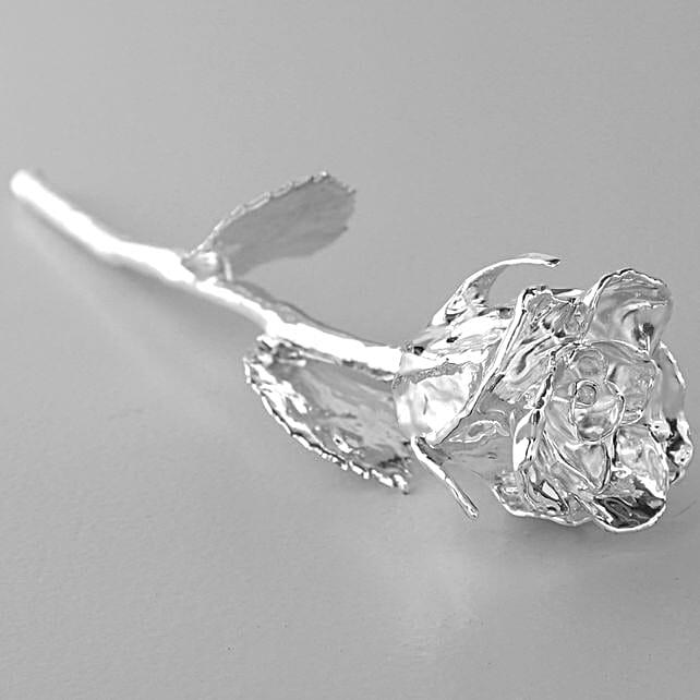 Forever Silver Rose
