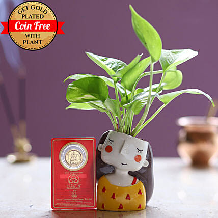 Online Gold Plated Coin With Money Plant