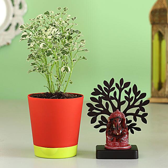 plant with ganesha idol combo for diwali