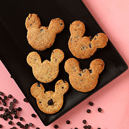 Gluten Sugar Free Teddy Chocochip FITcookies