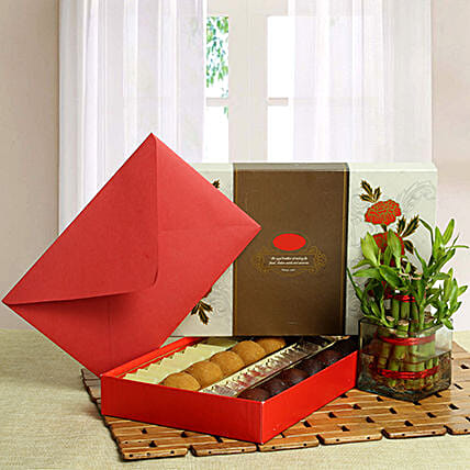 Lucky bamboo with sweets and a greeting card