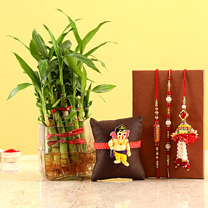 online family rakhi set with lucky plant