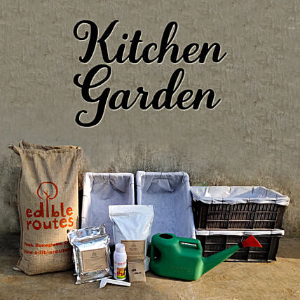 Healthy Veggie Kitchen Garden Crates:Send Organic Seeds