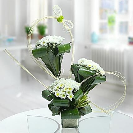 White daisies arrangement