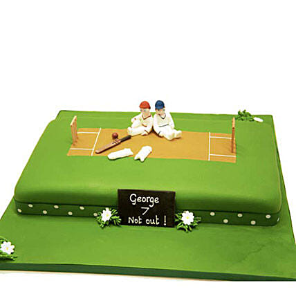 Heavenly Delights Cricket Cake 4kg Vanilla Eggless