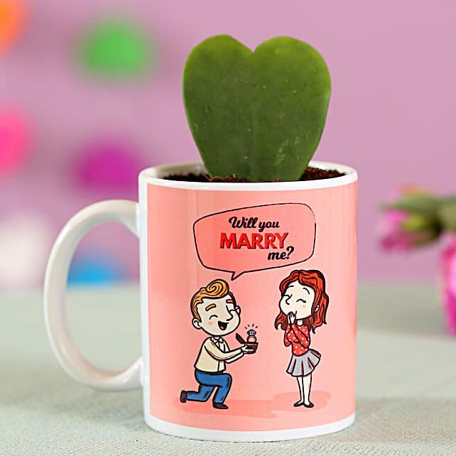 Hoya Plant In Mug Online