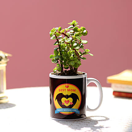 printed mug with plant for mothers day:Plants Delivery For Mothers Day