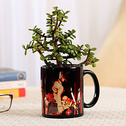 indoor plant in black photo mug:Buy Personalised Planter