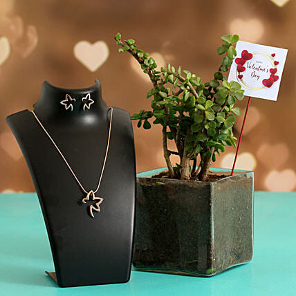 Jade Plant In Glass Vase With Jewellery Set V Day Tag