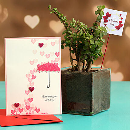 Jade Plant In Glass Vase With V-Day Tag & Greeting Card Hand Delivery