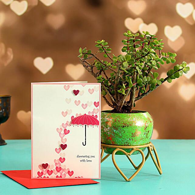 Jade Plant In Green Glittery Pot Love Umbrella Card
