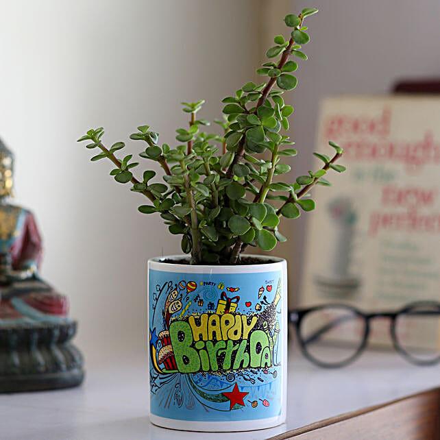 Jade Plant In Happy Birthday Ceramic Planter