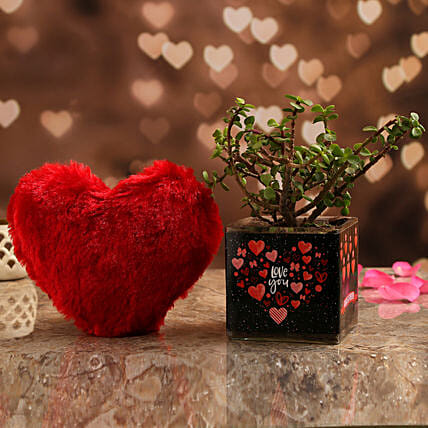 Jade Plant In Love You Always Vase & Red Heart