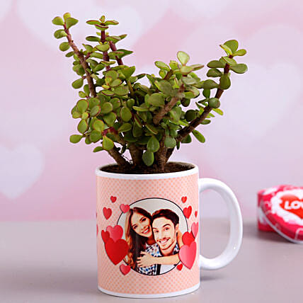 Jade Plant In Personalised Hearts Mug Hand Delivery