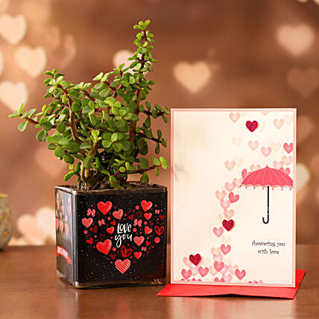 Jade Plant In Sticker Vase Greeting Card