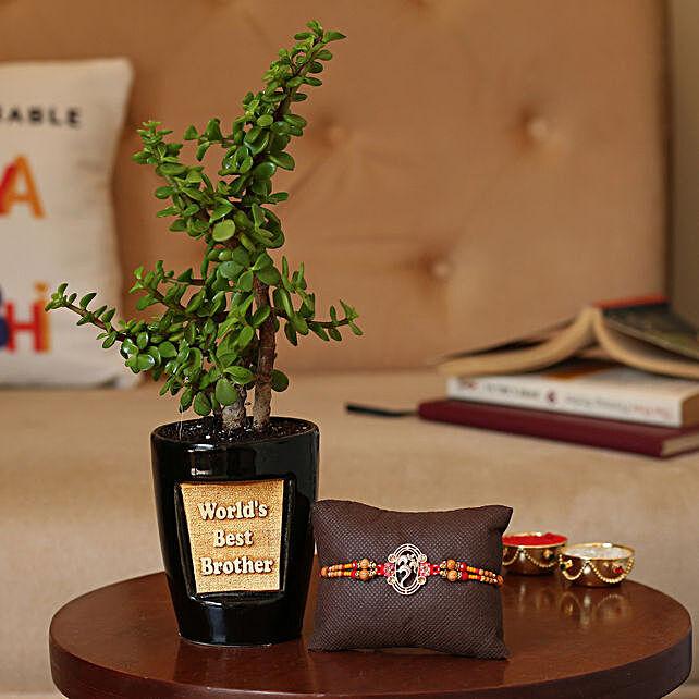 Designer Rakhi and Plants Online