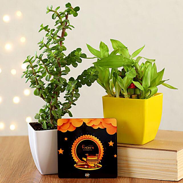 Karwa Chauth Plants & Gift Combo