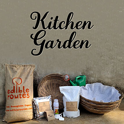 Leafy Greens Kitchen Garden Baskets
