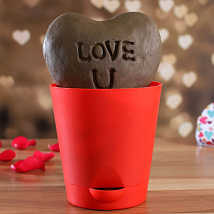 Love U Heart Plant In Red Vase:Send Organic Seeds