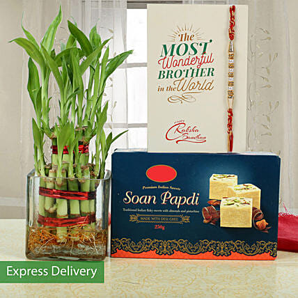 Lucky Bamboo And Soan Papdi For Pearl Rakhi