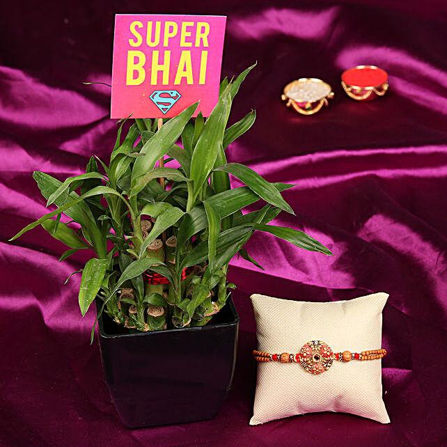 Plant & Rakhi Online For Bhai