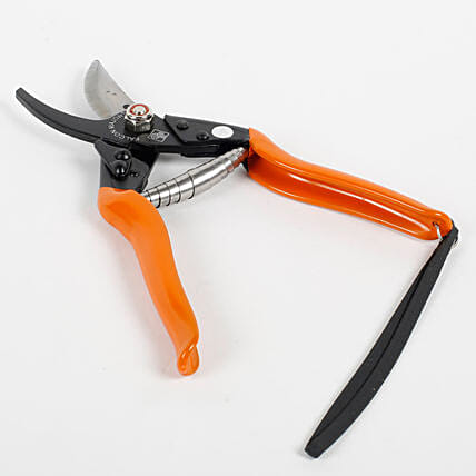 Garden Pruner Secateurs:Buy Gardening Tools