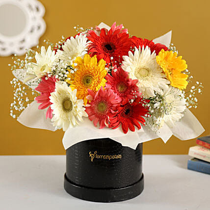 Mixed Brilliance Gerbera Blossoms Box:Flowers In box