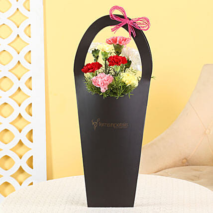 combo of carnation arrangement in sleeve bag