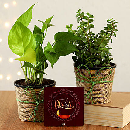 Online Diwali Table Top And Plant Combo