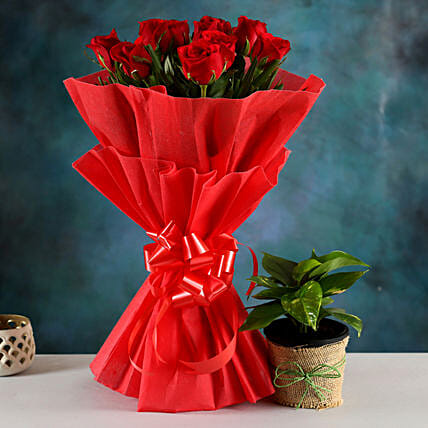 Buy Plant And Bouquet:New Year Gift Combos