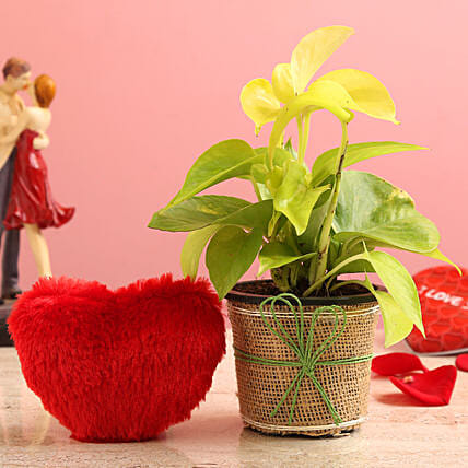 Money Plant In Brown Jute Wrapped Pot & Red Heart