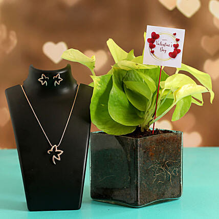 Money Plant In Glass Vase With V-Day Tag & Jewellery Set Hand Delivery