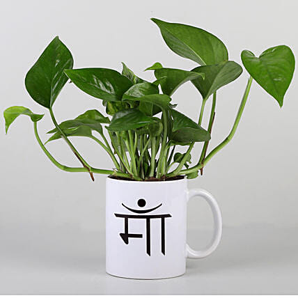 ma printed mug with money plant