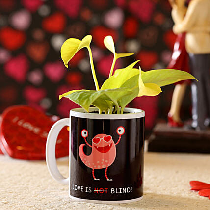 money plant in printed mug