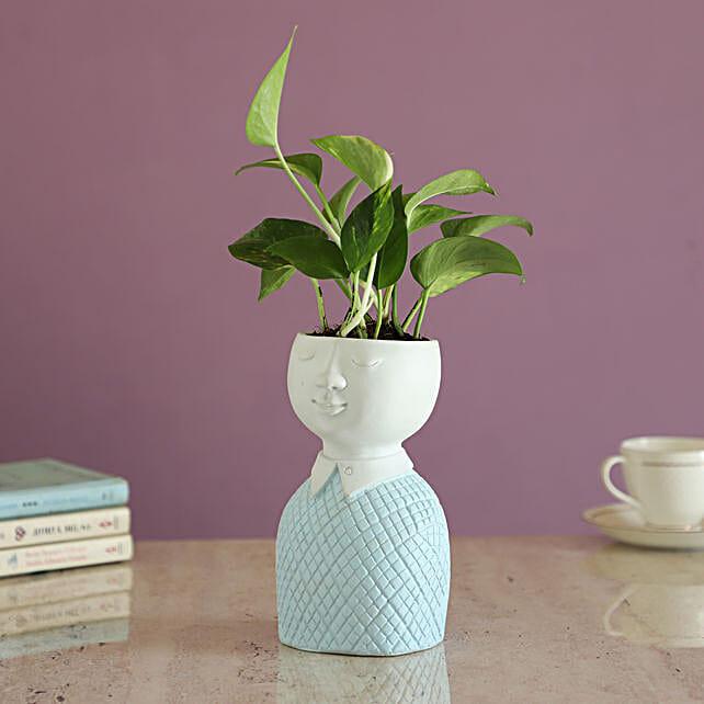 Money Plant In  Fancy Planter:Send Home Decor for Wedding
