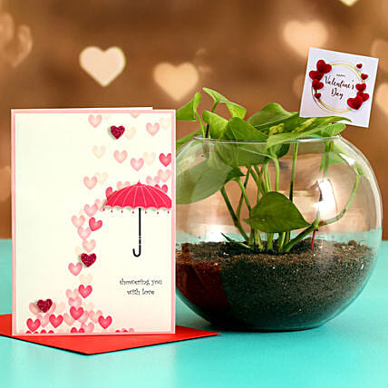Money Plant In Round Vase With Greeting Card & V-Day Tag Hand Delivery:Plant Combo For Valentines Day